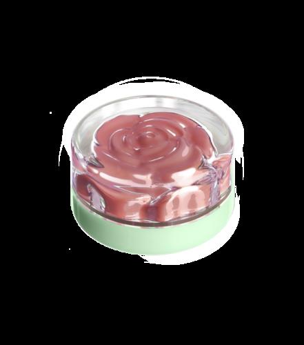 blush-garden-friday-rose (3)
