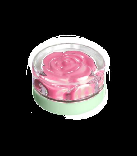 blush-garden-saturday-rose (3)