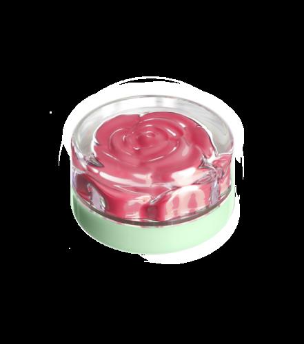 blush-garden-sunday-rose (3)
