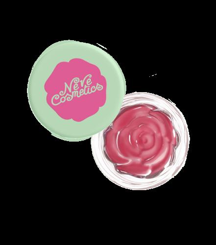 blush-garden-sunday-rose