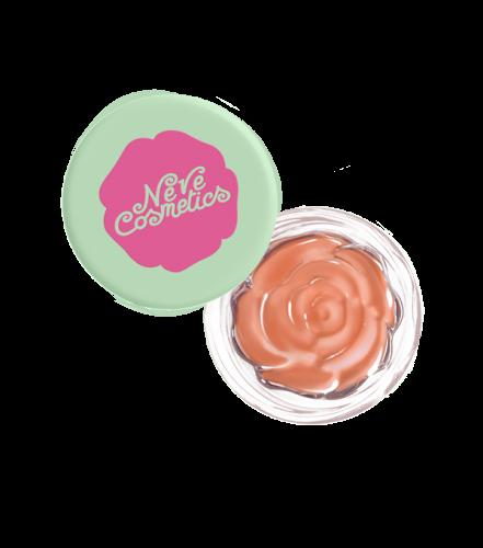 blush-garden-thursday-rose