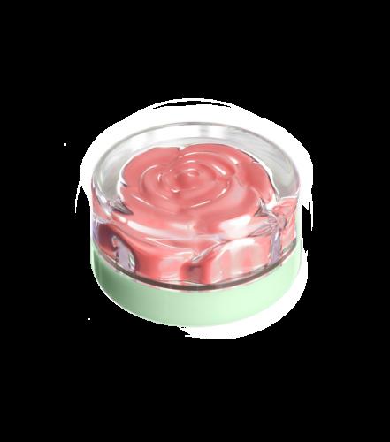 blush-garden-tuesday-rose (3)