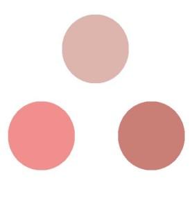 Trio-Blush-Benecos-274x293