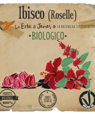 Ibisco reduced-500x717