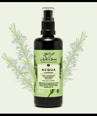 ledj-acqua-rosmarino-piante-500x717-1