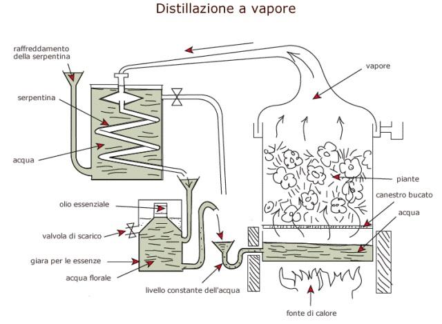 distillazione_vapore