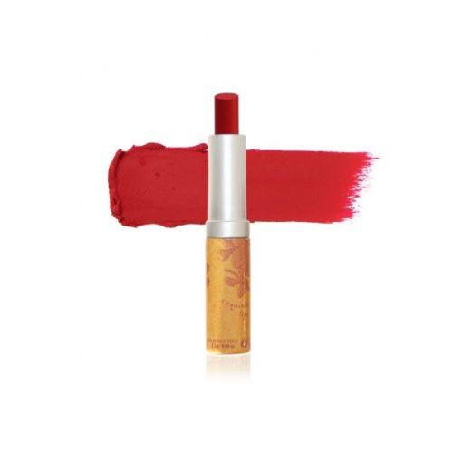 Levres sublime 282 rouge sombre souad